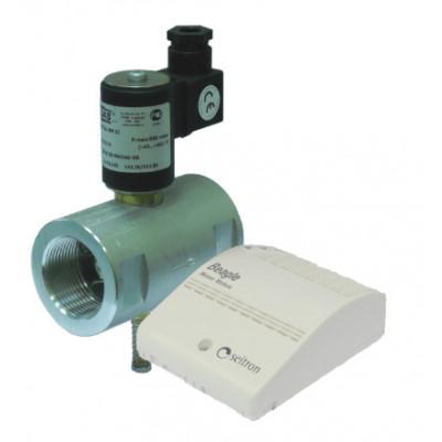 Сигнализатор CH4 + клапан ДУ32
